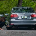 Volkswagen Jetta (A6) Tuning (6)