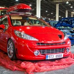 Modified Peugeot 207 (3)