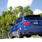 Modified BMW X5 (1)