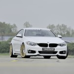 Rieger Tuning F32 (1)