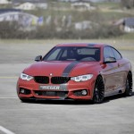 Rieger Tuning F32 (2)