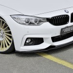 Rieger Tuning F32 (4)