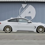 Rieger Tuning F32 (5)