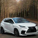Lexus NX Tuning (5)