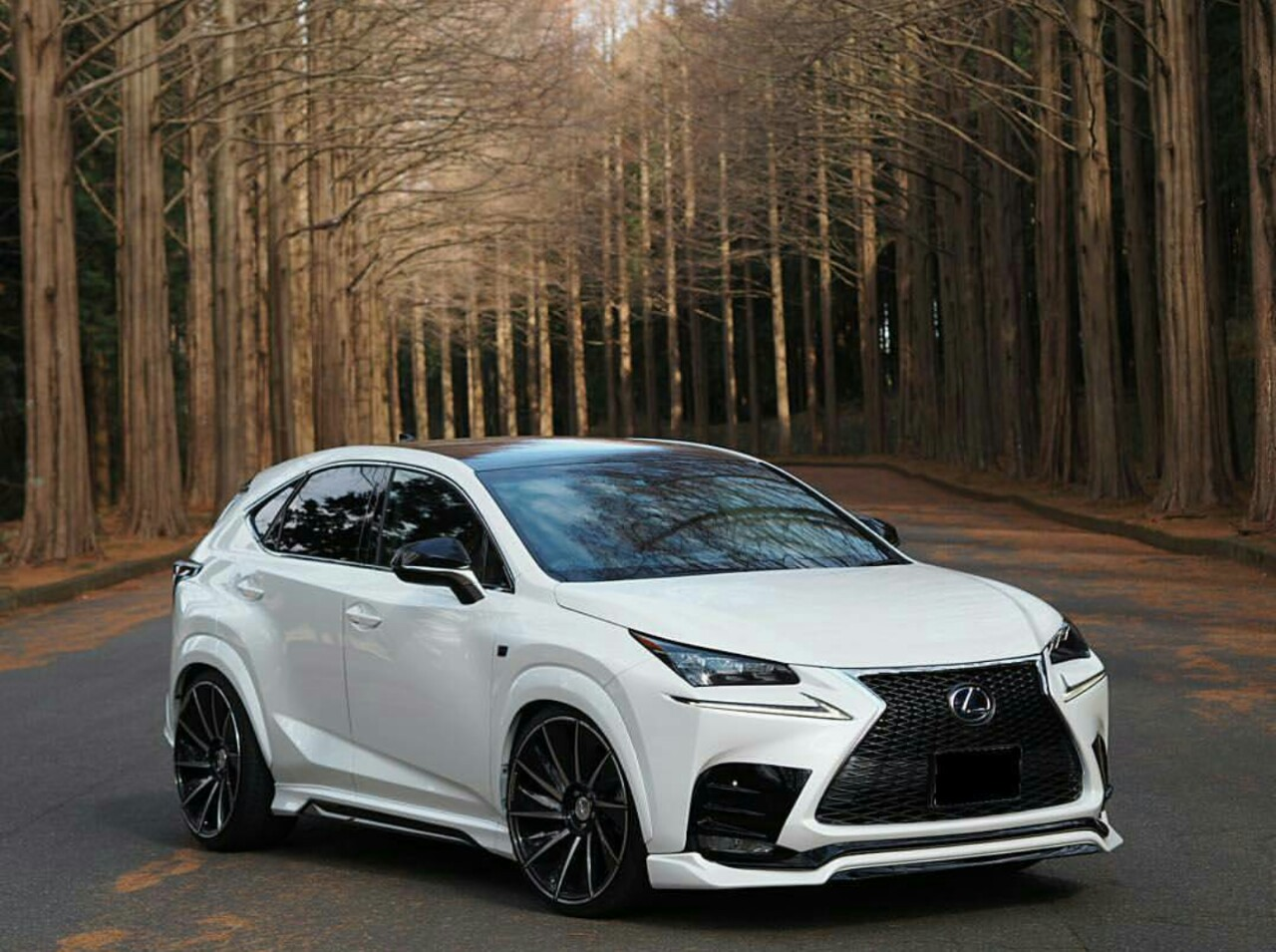 2016 lexus nx 300h new car release date and review 2018 amanda felicia. Black Bedroom Furniture Sets. Home Design Ideas