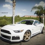Ford Mustang MK6 (3)